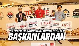 Satrancın Şampiyonlarına ödüller...
