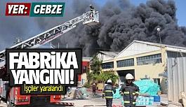 Gebze'de fabrikada yangını:...