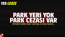 Park cezaları vatandaşı canından...