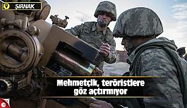 Mehmetçik, teröristlere göz açtırmıyor