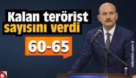Soylu, kalan terörist sayısını verdi