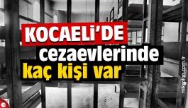Kocaeli'de cezaevlerinde kaç kişi var?