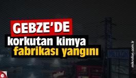 Gebze'de kimya fabrikası yangını
