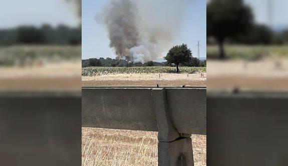 GÜNCELLEME - Çanakkale'de orman yangını çıktı