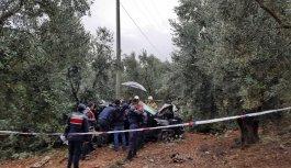 Bursa'da kontrolden çıkarak zeytin ağaçlarına çarpan cipin sürücüsü öldü