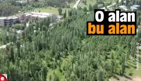 ODTÜ'de kesilen alanın havadan görüntüsü