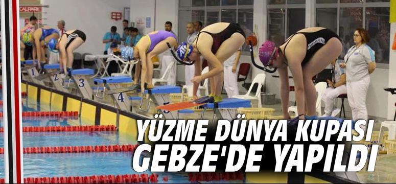Yüzme Dünya Kupası Gebze'de yapıldı